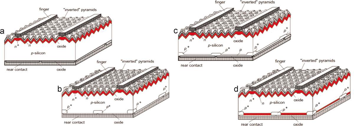 Panele fotowoltaiczne - Schemat budowy ogniw krzemowych z rodziny PERC